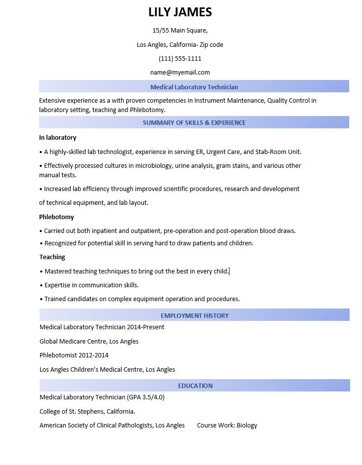 Writing A professional CV-combination