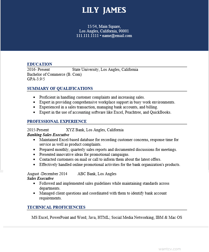 How To Write A Resume For Sales Executive in Banking? Free
