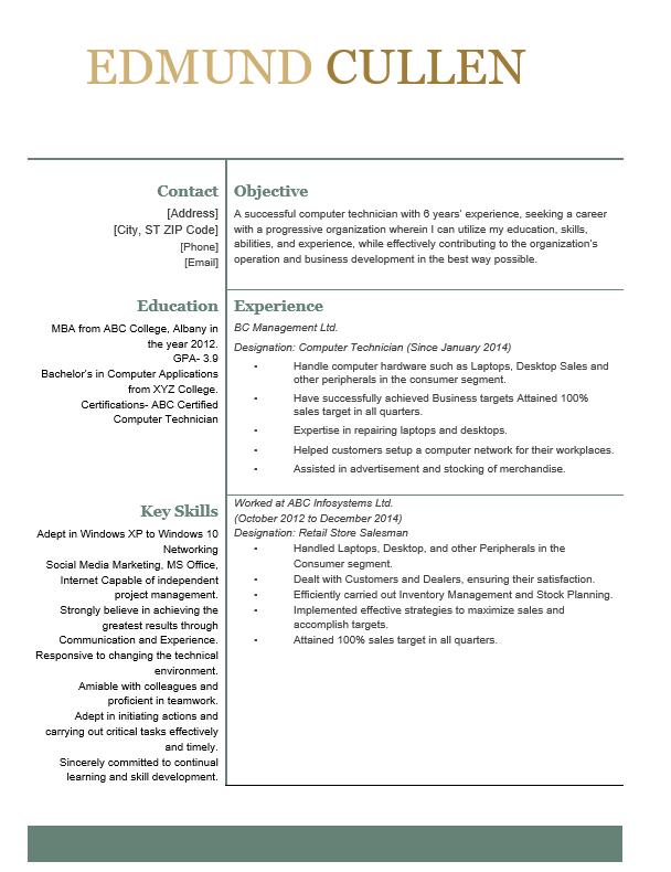 Computer Technician resume format