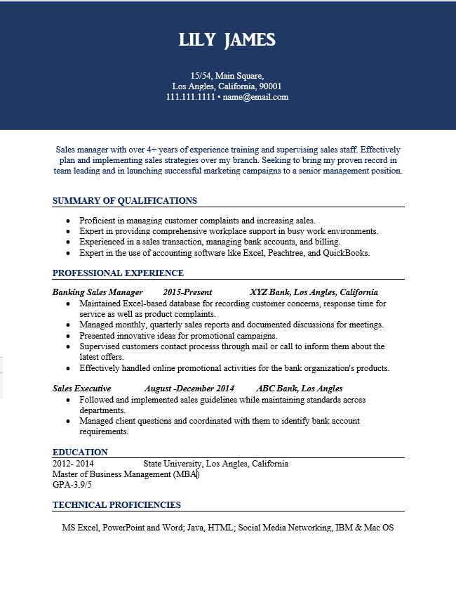 Sales Manager Resume Sample
